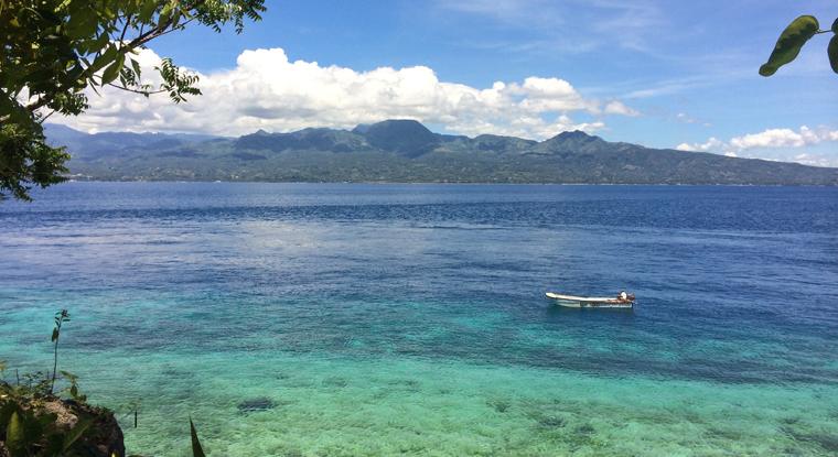 Cebu_Sea
