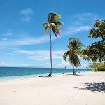 """セブ島を拠点に離島巡り。地元の人も知らない""""パミラカン島""""で◯◯◯に出会った"""